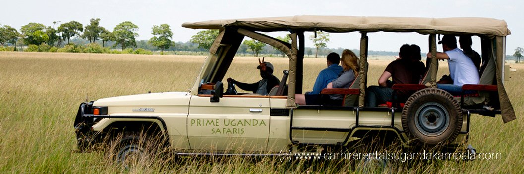 Open safari vehicles for a game drive