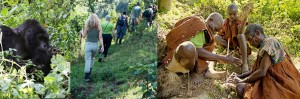 gorilla-trekking-bwindi